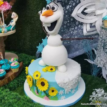 birthday cake frozen