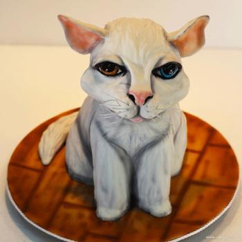 cat 3d cake