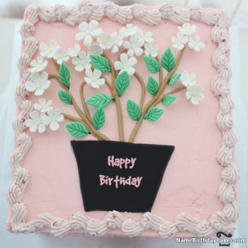 decorated bday cakes images