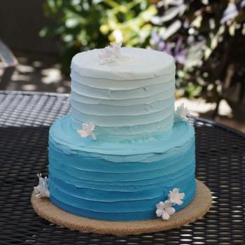 simple frozen cake for birthday